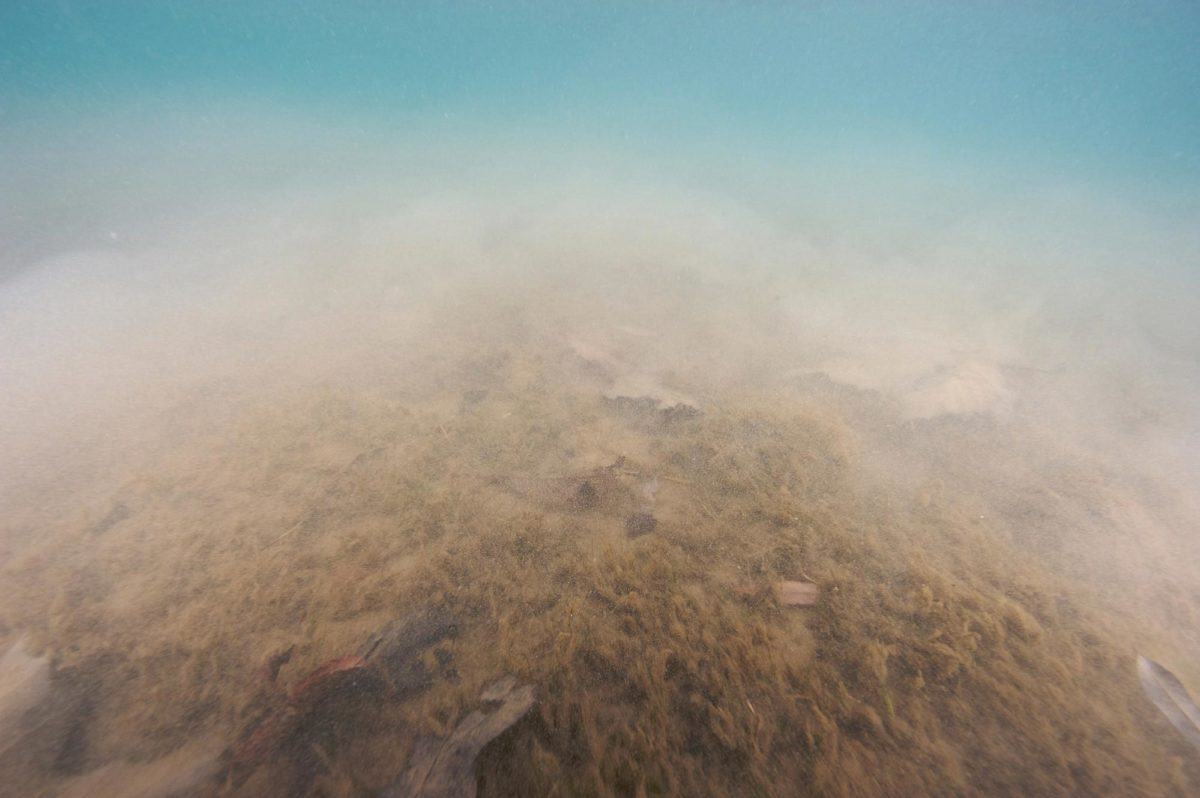 07_Ground-Visibility_Hostettler-Heidi