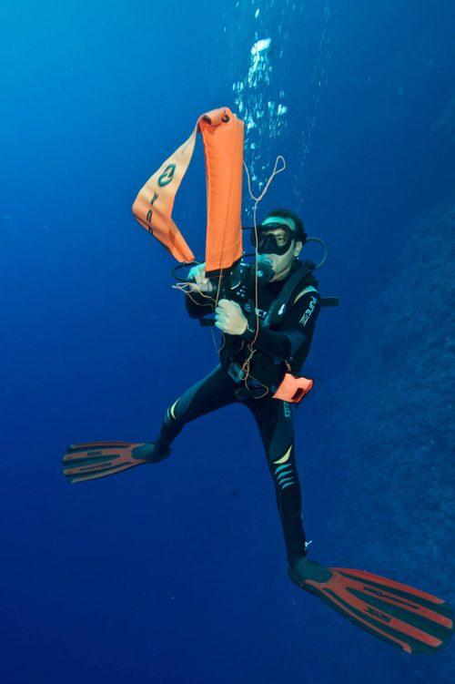 16_Dive-Buddy-Heidi-Hostettler