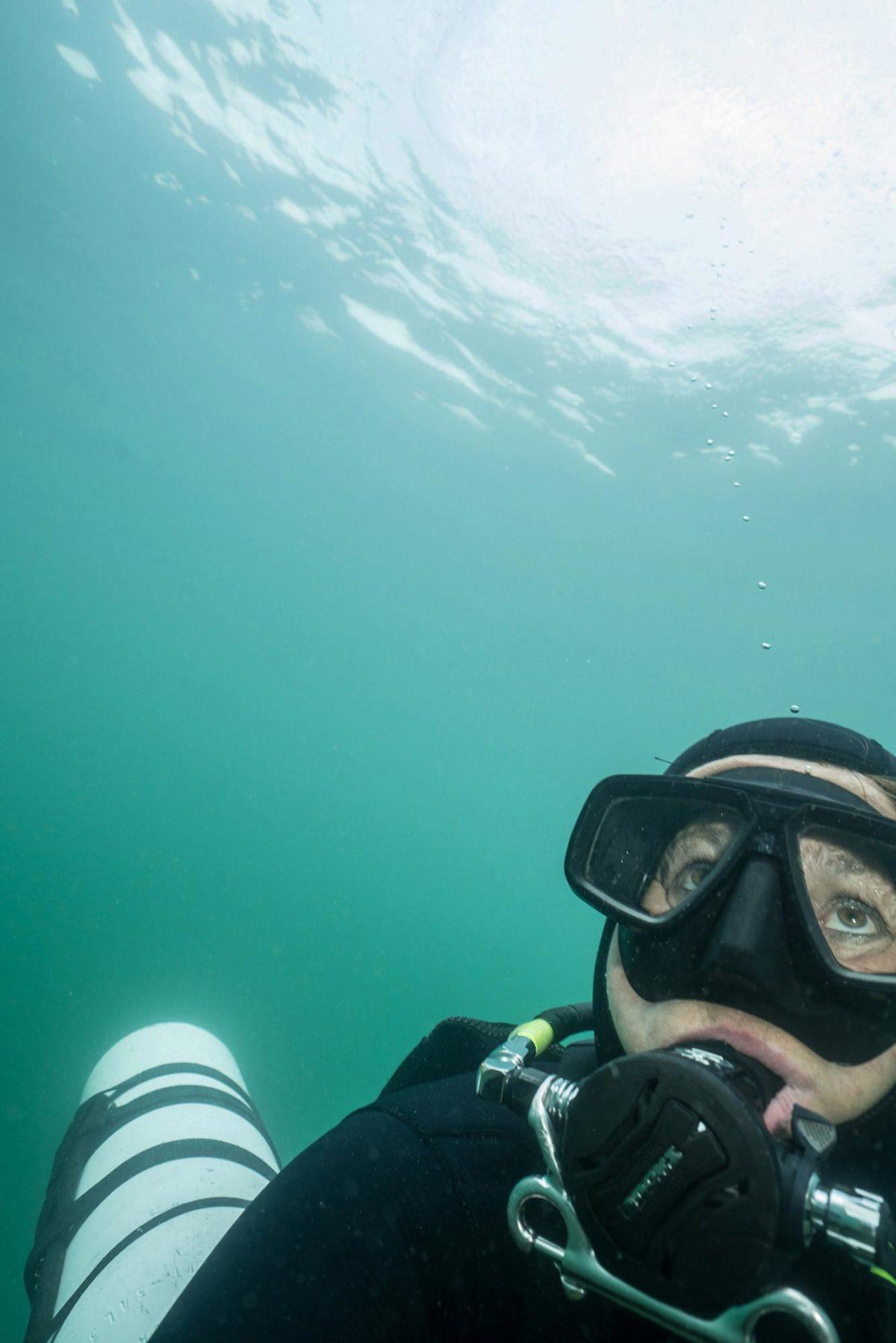 22_Dive-Buddy-Heidi-Hostettler_DSC4101